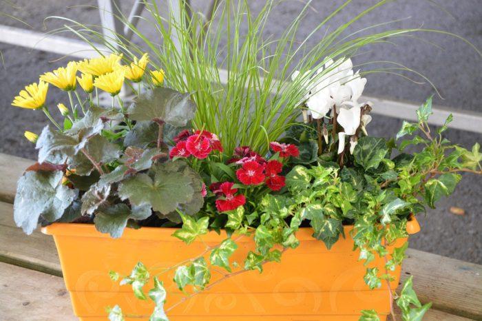Jardinière pour décoration extérieure